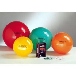 LEDRAGOMMA GymnastikBall Standard průměr 65 cm - výběr barev