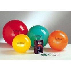 LEDRAGOMMA GymnastikBall Standard průměr 53 cm - výběr barev