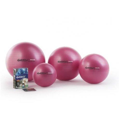 LEDRAGOMMA GymnastikBall - velký cvičební míč k poúrazové rehabilitaci