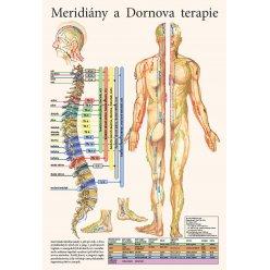 Schéma - Meridiány a Dornova terapie
