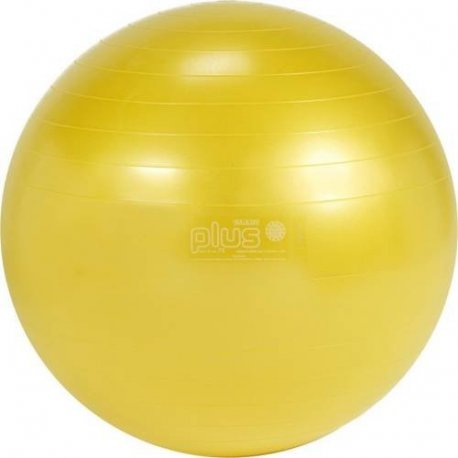 Gymnastický míč Gymnic Plus průměr 75cm