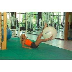 LEDRAGOMMA Gymnastikball Hi Fit maxafe průměr 53 cm