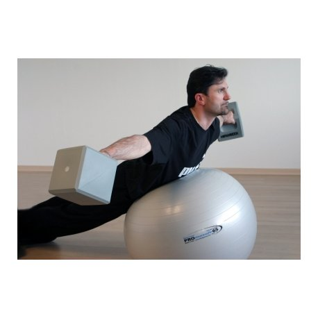LEDRAGOMMA Gymnastikball Promaxafe průměr 65 cm